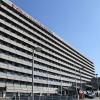 Belçika hastanelerinde binlerce kişi hastane mikrobu kaptı