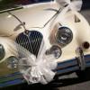 Brüksel'de düğün kortejlerine ceza yağdı