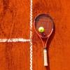 Belçika'da teniste Ermeni asıllı suç örgütü açığa çıkartıldı