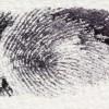 Belçika'da kimlik kartlarında parmak izi dönemine geçiliyor