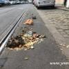 Turuncu çöp poşetleri adeta mikrop saçıyor