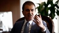 AB Bakanı ve Başmüzakereci Çelik'ten Hollanda tepkisi