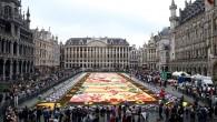 Brüksel'de çiçek halı