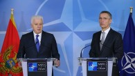 """NATO'dan """"işkence"""" açıklaması"""