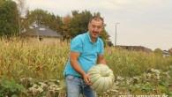 Emirdağ kabağını Belçika'da yetiştiren Emirdağlı
