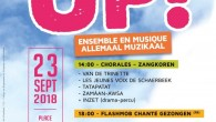 "Schaerbeek'te ""Allez Up !"" Müzik Festivali"