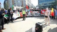 """Brüksel'de """"helal kesim yasağı"""" protestosu"""