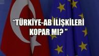 """""""Koşullar zorlasa da Türkiye-AB ilişkilerinin kopması zor"""""""