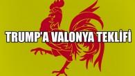 Ayrılıkçı Flamanlar, Trump'a Valonya'yı satmayı teklif etti