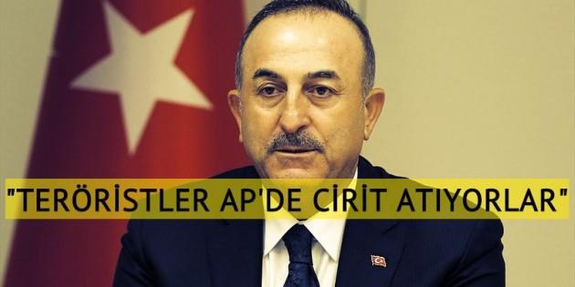 """Çavuşoğlu: """"Teröristler AP'de adeta cirit atıyorlar"""""""
