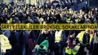 Sarı yelekliler Brüksel'de eylem yaptı
