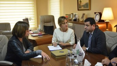 AP Yeşiller Grubu'ndan HDP'ye ziyaret