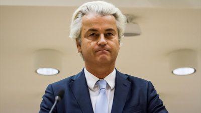 Hollanda'da ırkçı parti ikinci oldu