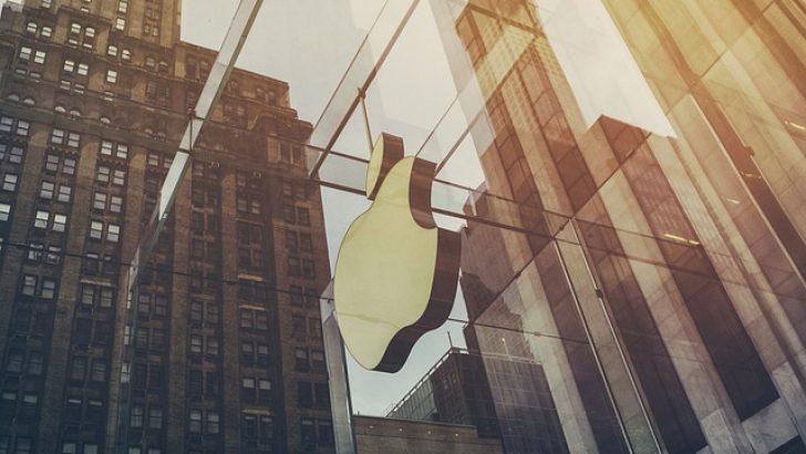 Apple, AB'nin yetkisini aştığını iddia etti