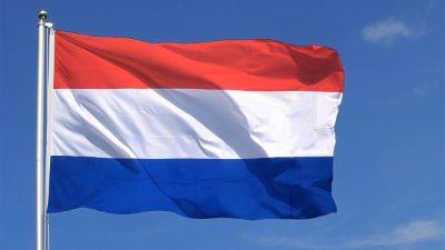 Hollanda Irak'ta askerlere ve peşmergelere verdiği eğitim faaliyetini askıya aldı