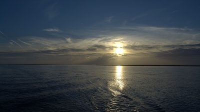 Belçika sularında 1 ton 250 kilo ağırlığında kokain ele geçirildi