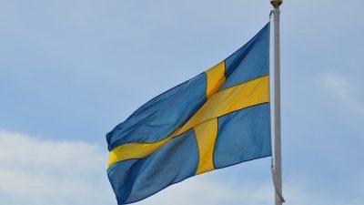 İsveç'te belediyeden PKK paçavrası asan derneğe yaptırım