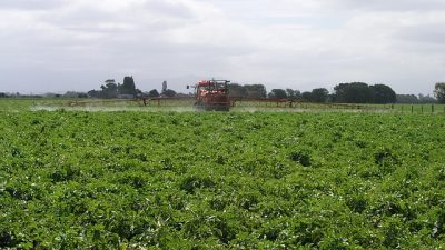 Yasa dışı böcek ilacı satan Amazon'a 1,2 milyon dolar ceza