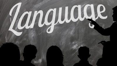 AB'nin yüzde 65'i yabancı dil biliyor