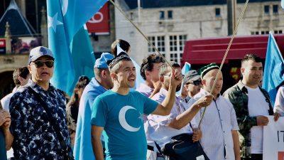 Uygur Türkleri Hollanda'da Çin'i protesto etti