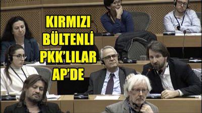 Kırmızı bültenle aranan PKK'lılar AP'de ortaya çıktı