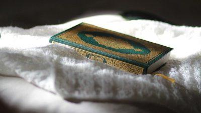 """Hollanda'da bir okul İslam'ı """"şiddet dini"""" olarak gösteren ödevden pişman"""