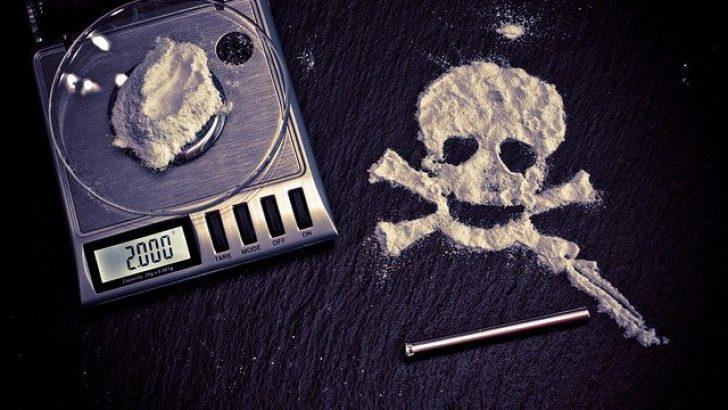 Belçika'da 17 ton kokain ele geçirildi
